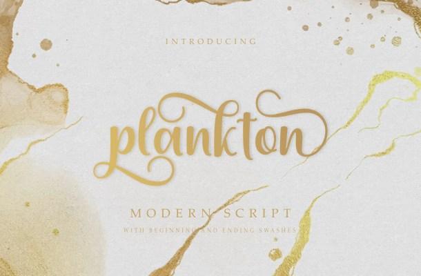 Plankton Calligraphy Script Font