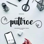 Puttroe Script Handwritten Font