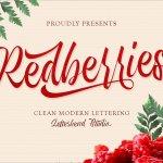 Redberries Calligraphy Script Font