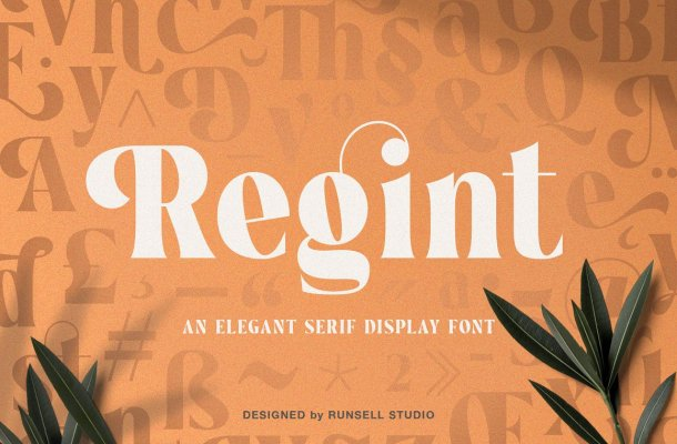 Regint Elegant Serif Display Font