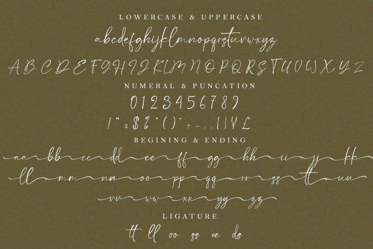 Satteck Luxury Signature Calligraphy Script Font-3