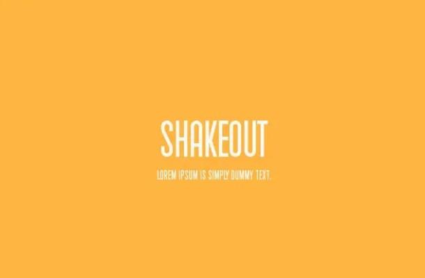 Shakeout  Sans serif Font