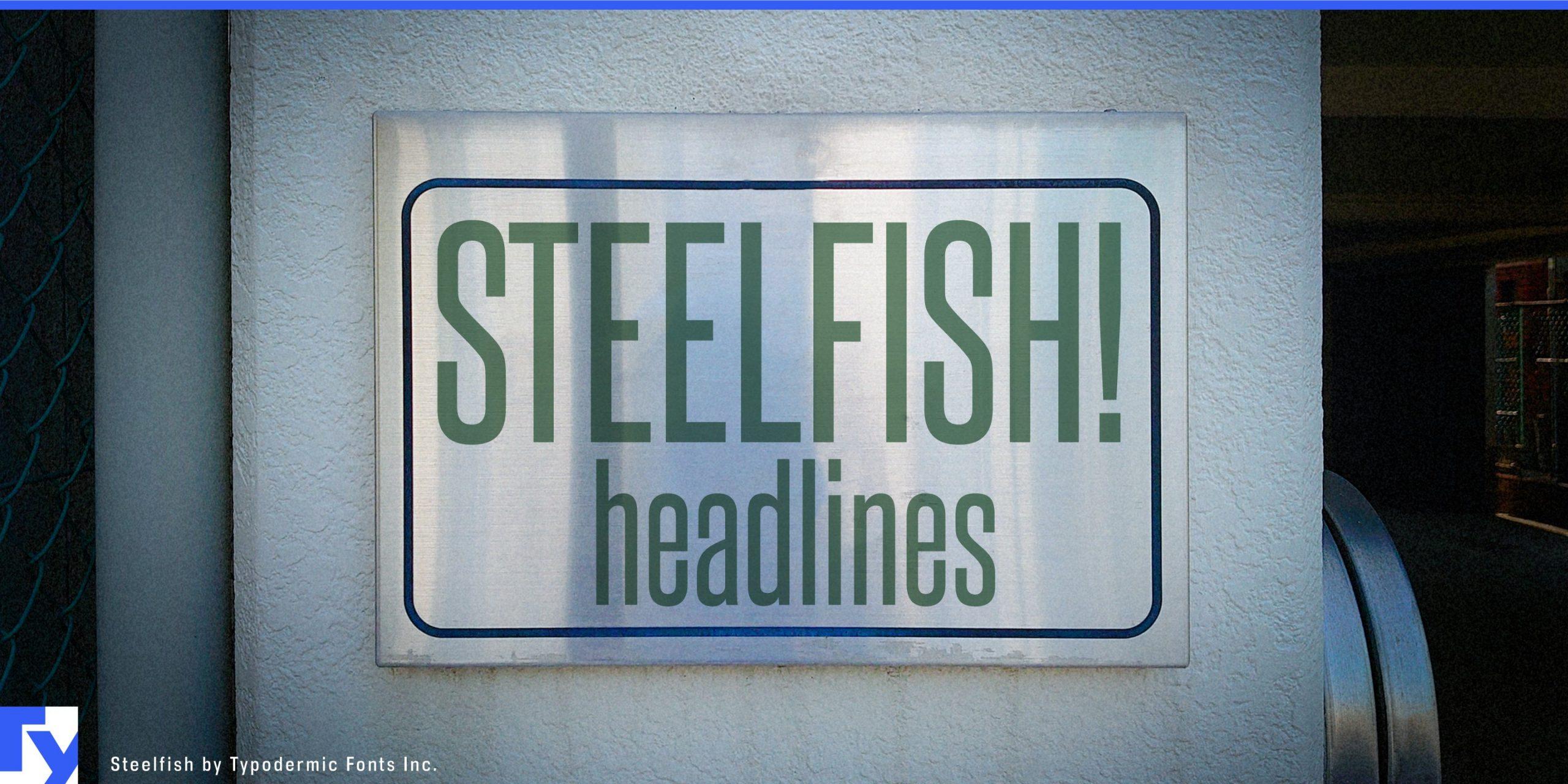 Steelfish Sans serif Font-1