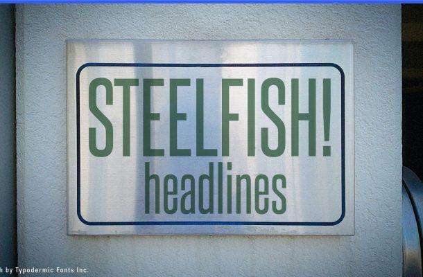 Steelfish Sans serif Font Family
