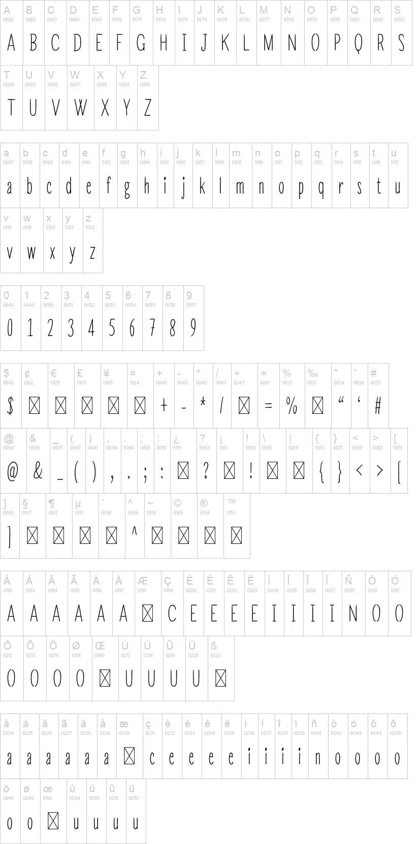 Sunrise Minimalist Serif Font-3
