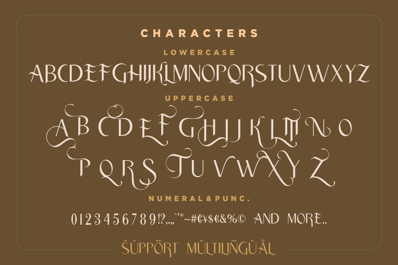 Traditian Sans Serif Font-3