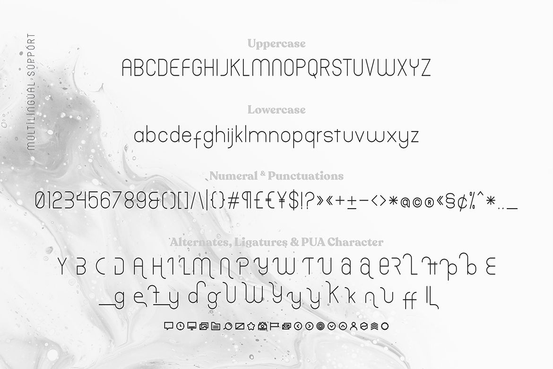 Trellacote Modern Sans Serif Font-3