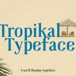 Tropikal Serif Display Typeface