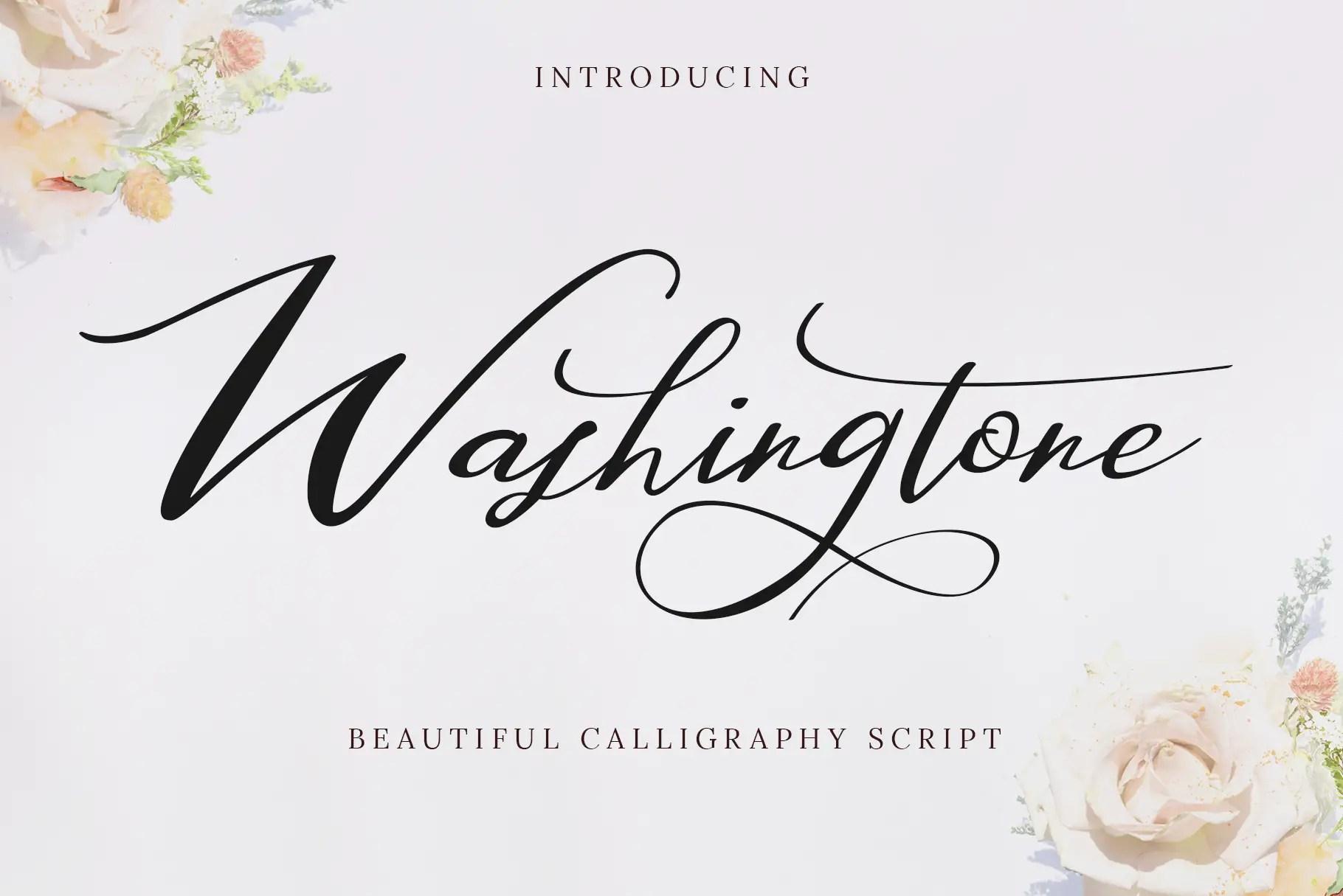 Washington Beautiful Calligraphy Script Font-1