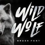 Wild Wolf Script Brush Font