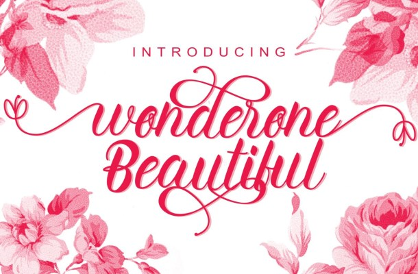 Wonderone beautiful handwritten Script Font