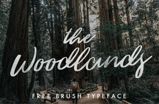 Woodlands Brush Script Font
