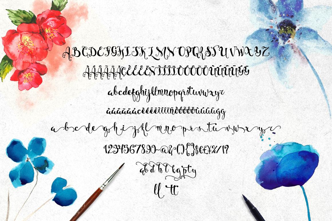 Bellanche Script Calligraphy Font-3