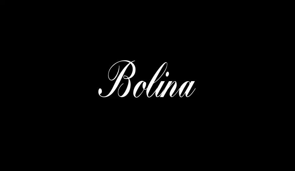 Bolina Calligraphy Script Font-1