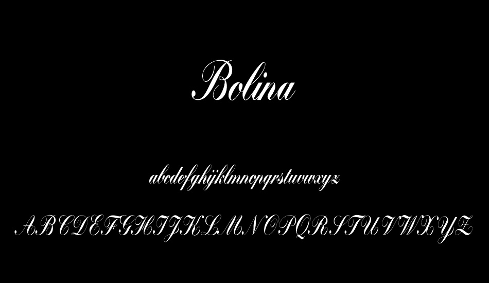 Bolina Calligraphy Script Font-3