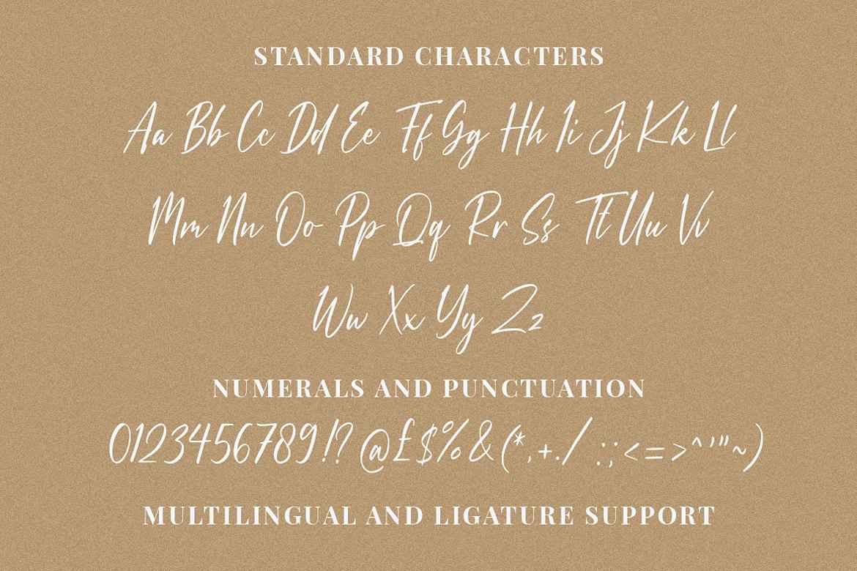 Dandelion Fall Handwritten Script Font-3