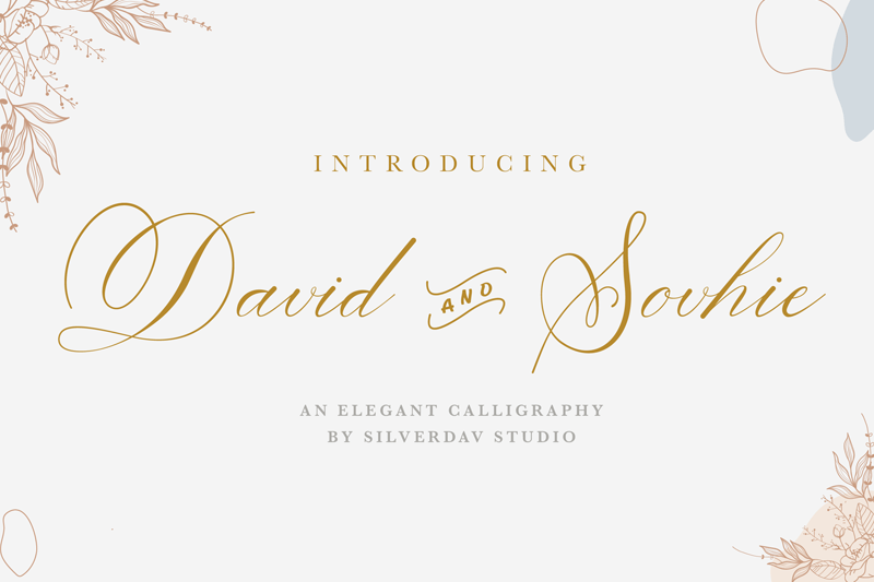 David And Sovhie Script Calligraphy Font-1