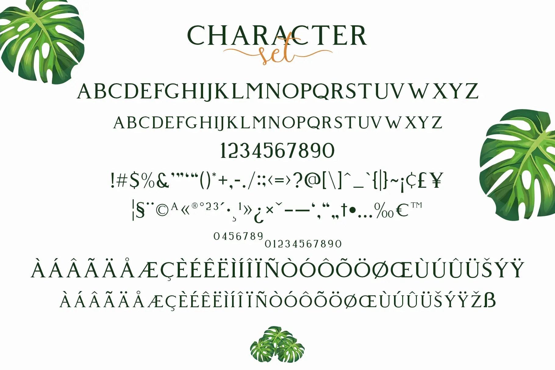 Giveny Classy Serif Font-3