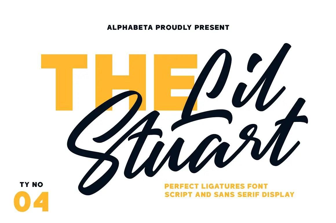 Lil Stuart Ligature Script Sans Serif Duo Font-1
