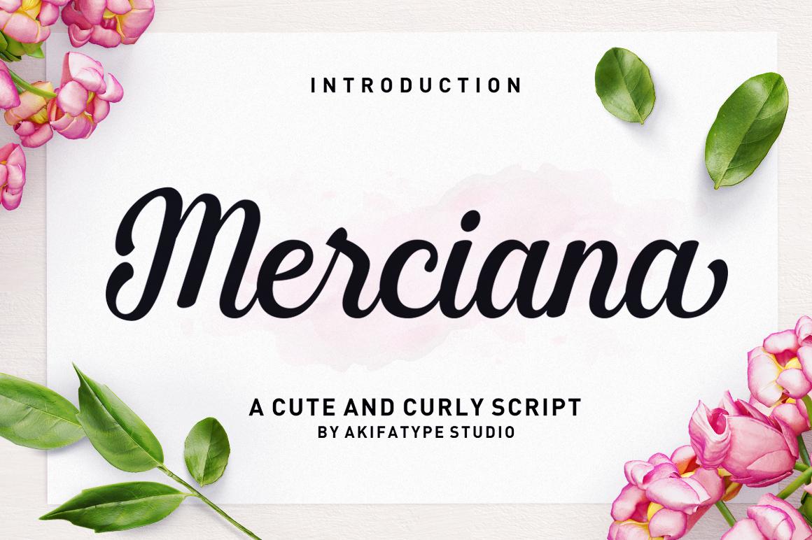 Merciana Script Handwritten Font-1
