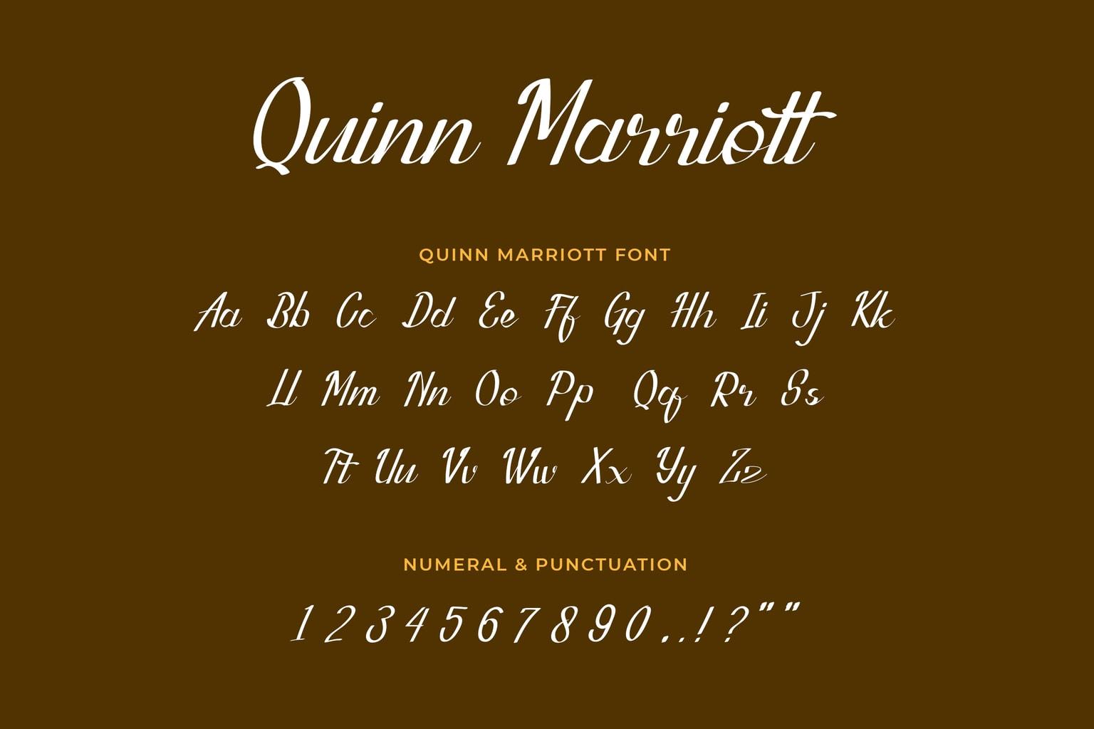 Quinn Marriott Script Font-3