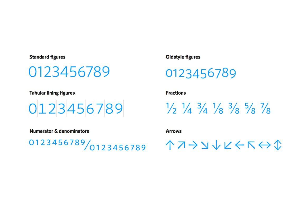 RNS Sanz Clean Sans Serif Font Family-3