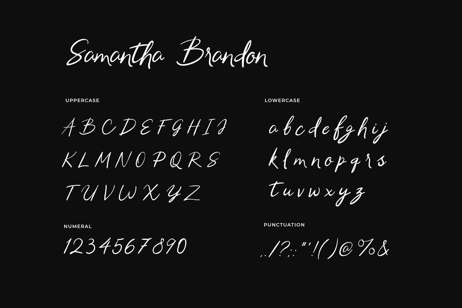 Samantha Brandon Script Handwritten Font-3
