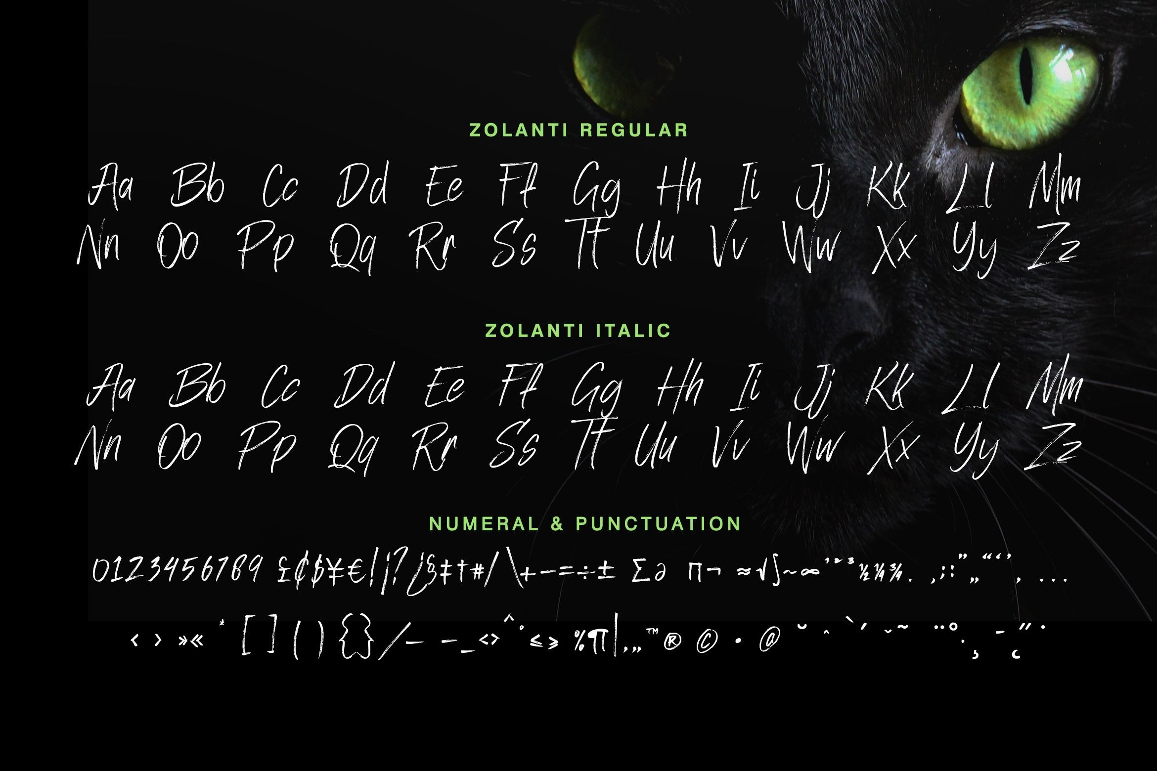 Zolanti Masculne Handwriting Brush Font-3