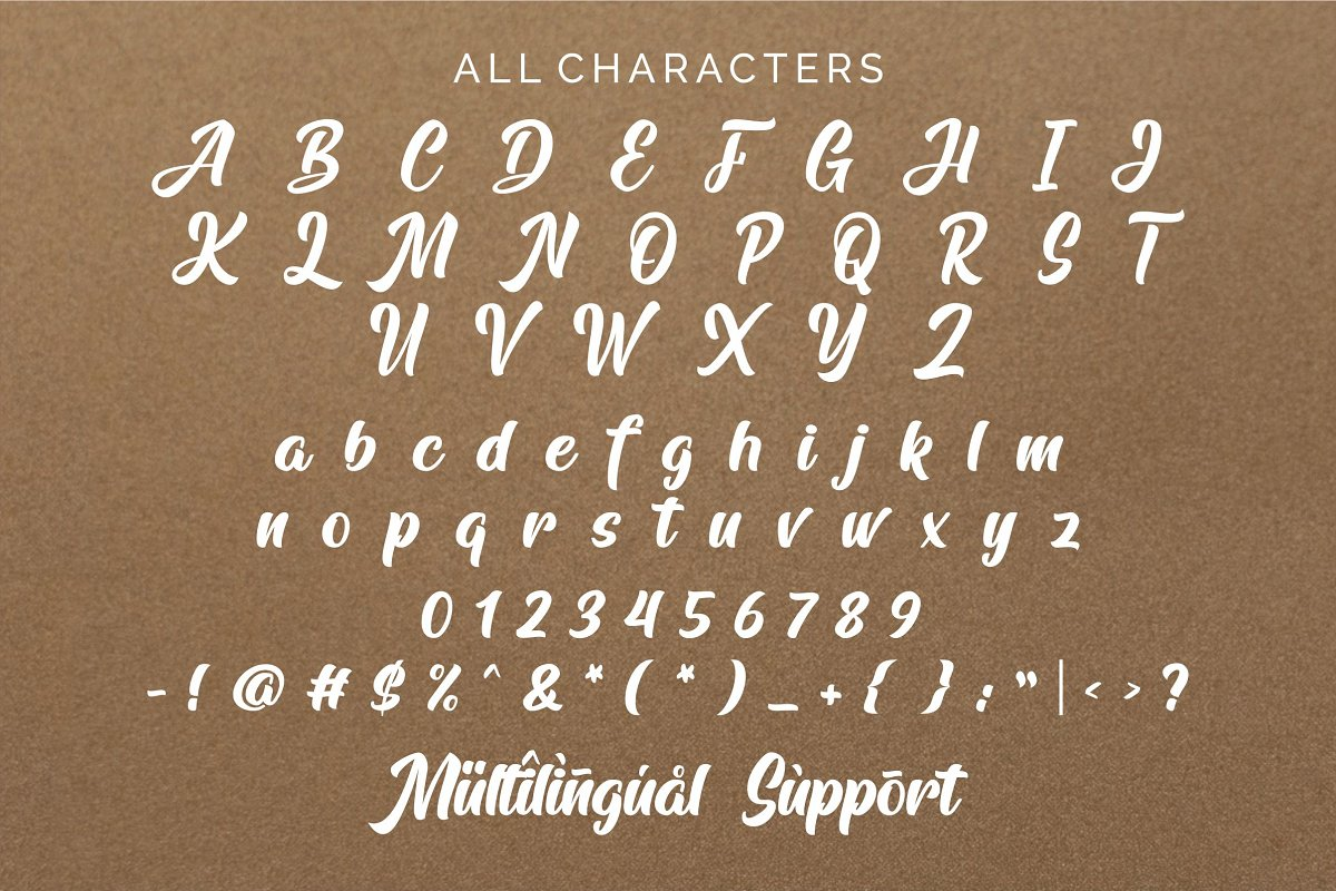 Arfelick Feather Handmade Script Font-3