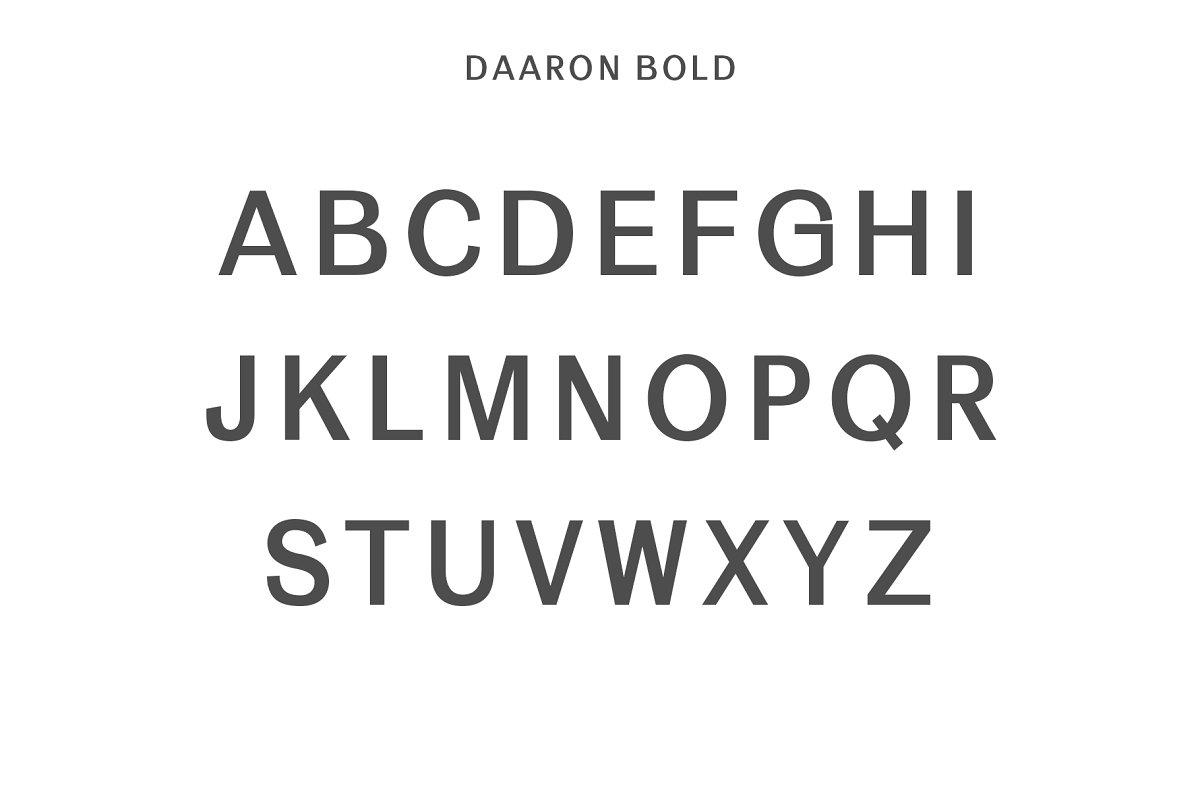 Daaron Sans Serif Font Family-4