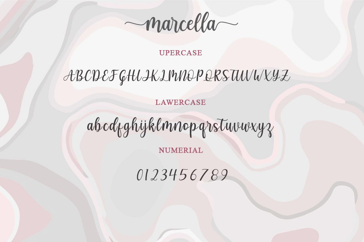 Marcella Calligraphy Script Font-2