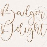 Badger Delight Modern Monoline Script Font