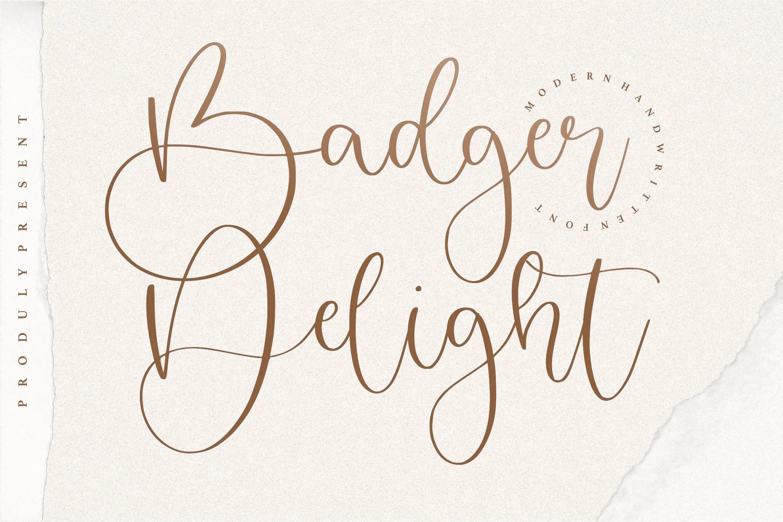 Badger Delight Modern Monoline Script Font-1