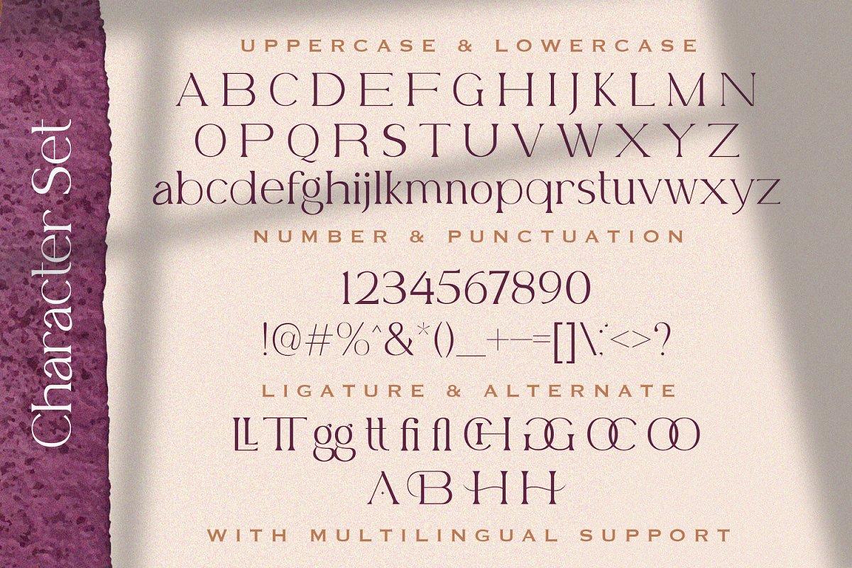 Belfina Husairy Classic Serif Font-3