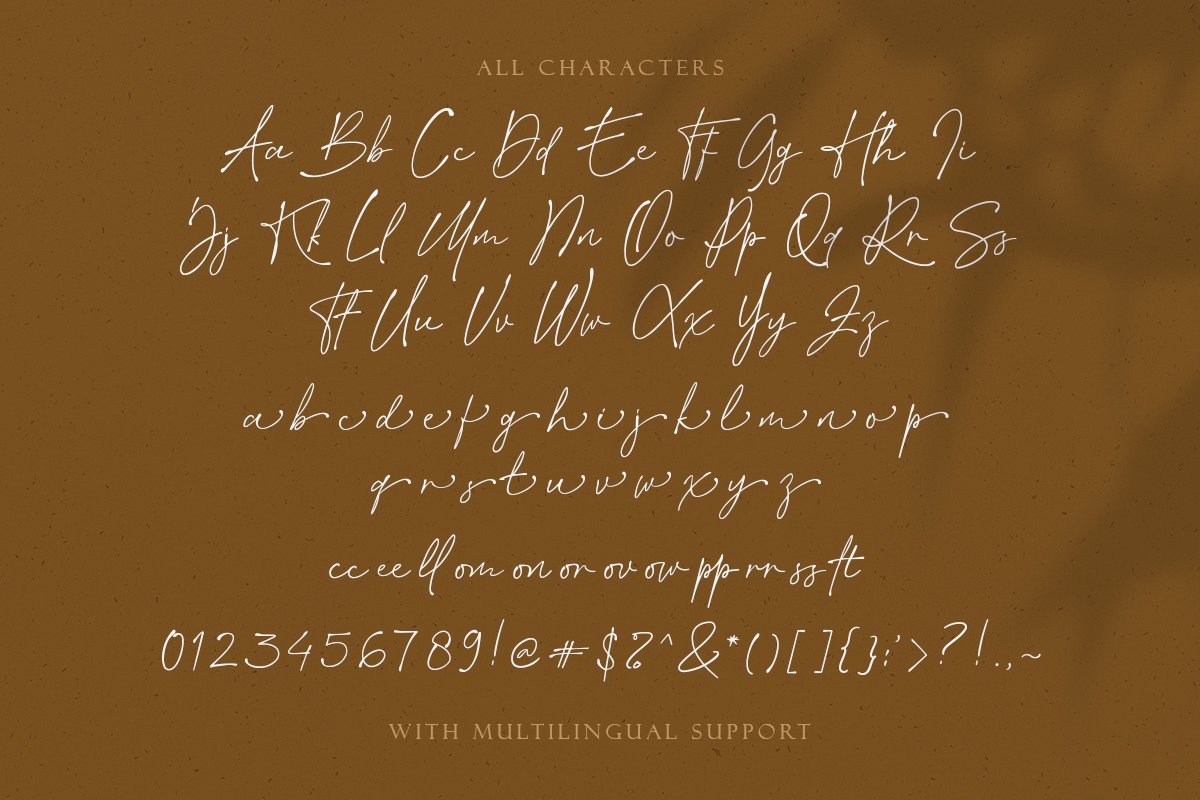 Billion Reach Signature Script Font-3