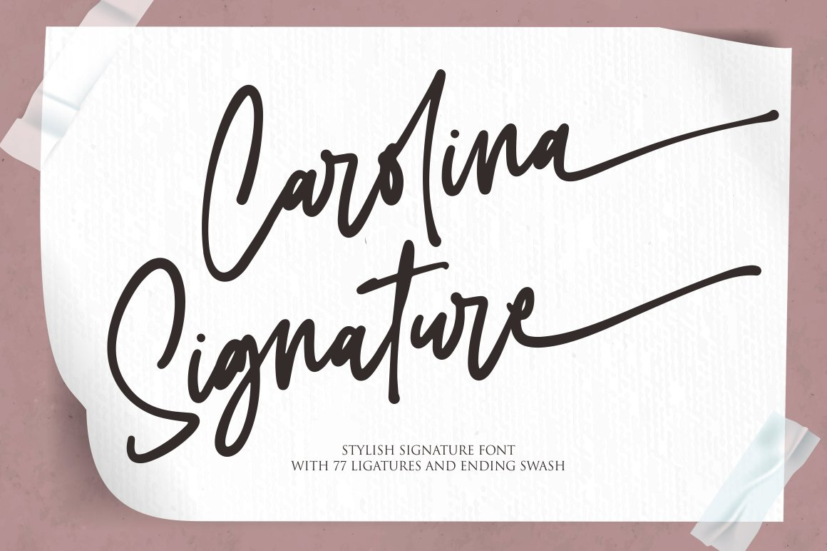 Carolina Signature Script Handwritten Font-1