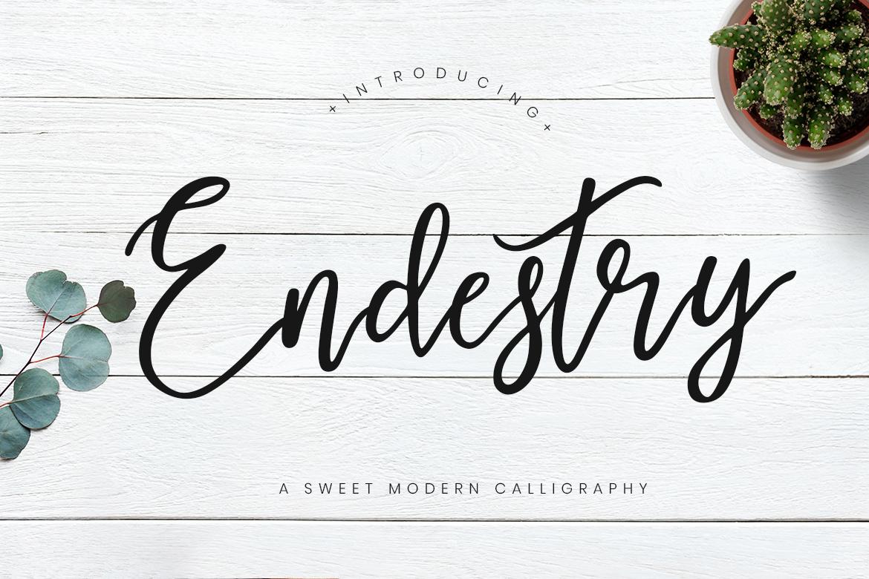 Endestry Modern Calligraphy Font-1