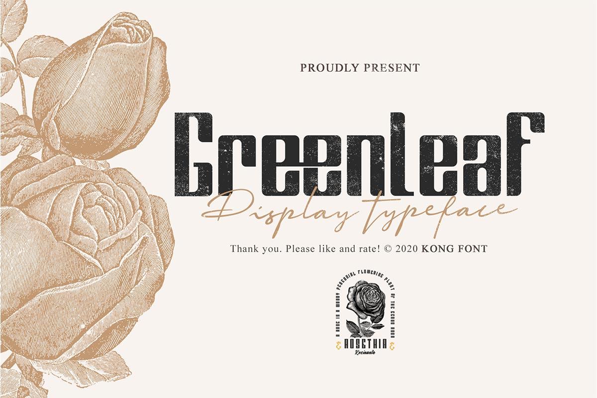 Greenleaf Fancy Font-1