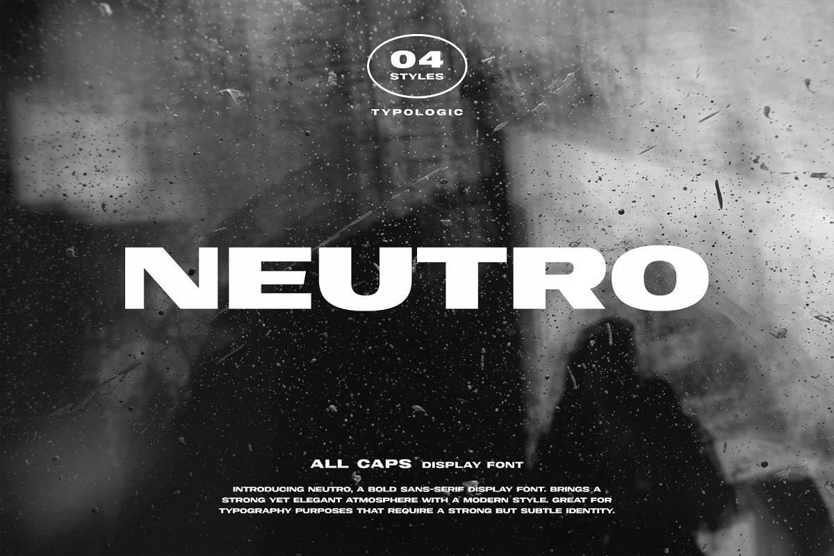 Neutro Bold Sans Display Font-1
