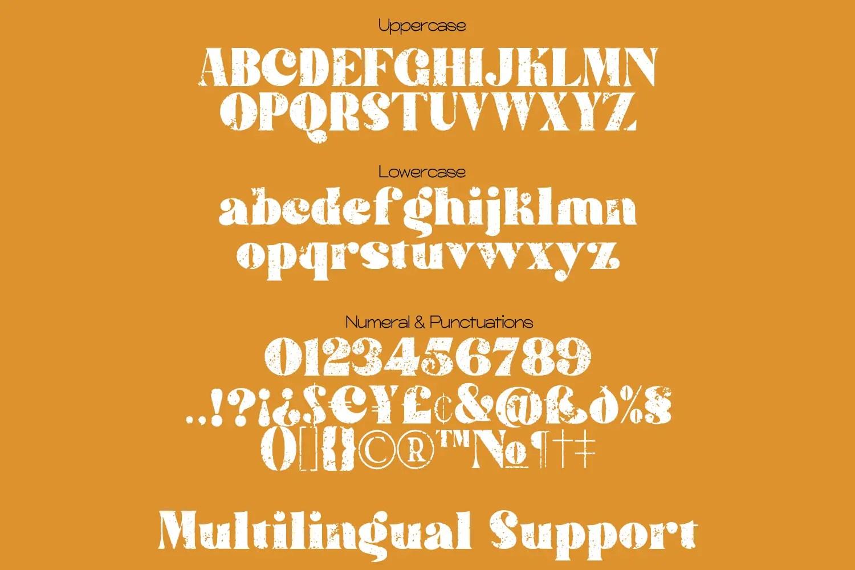 Sattin Modern Script Serif Font Duo-2
