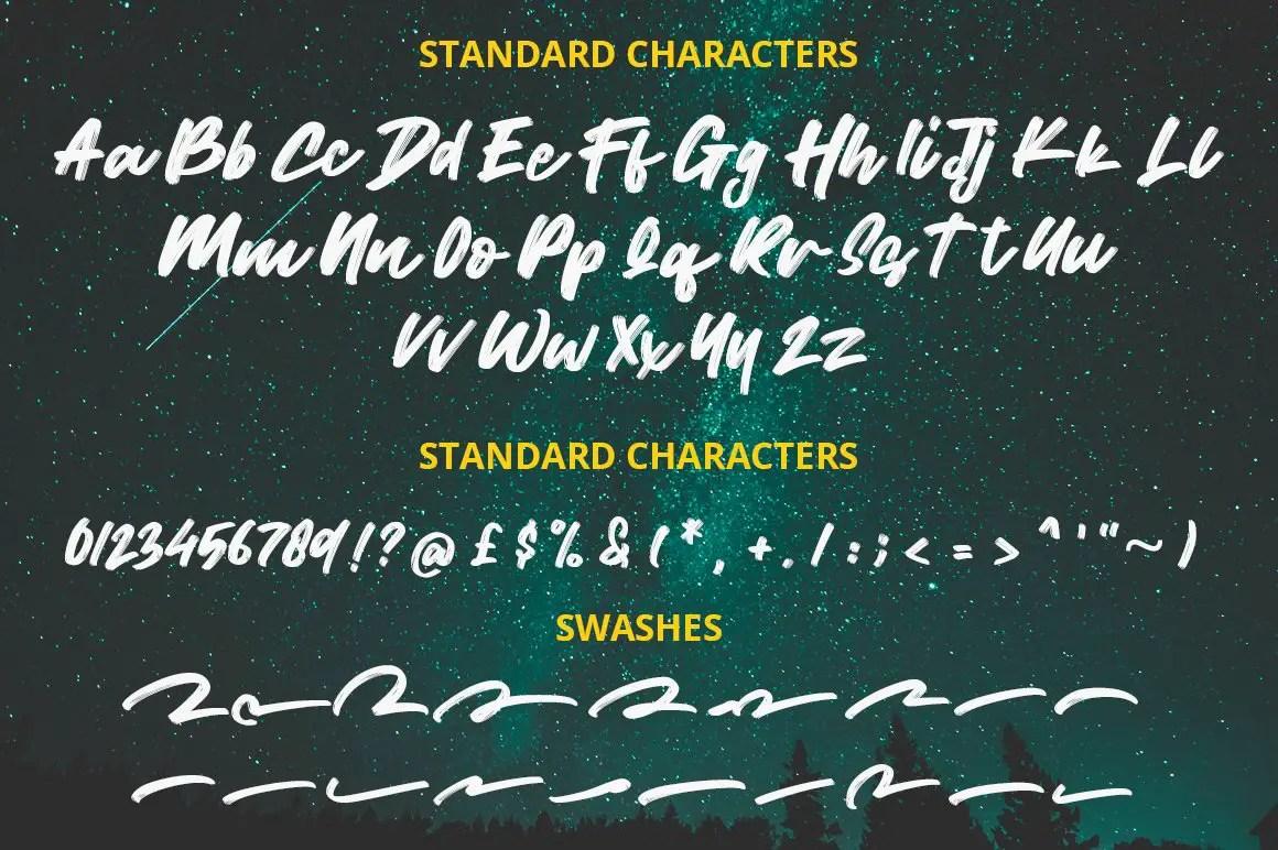 Wild Youth Brush Script Font-3