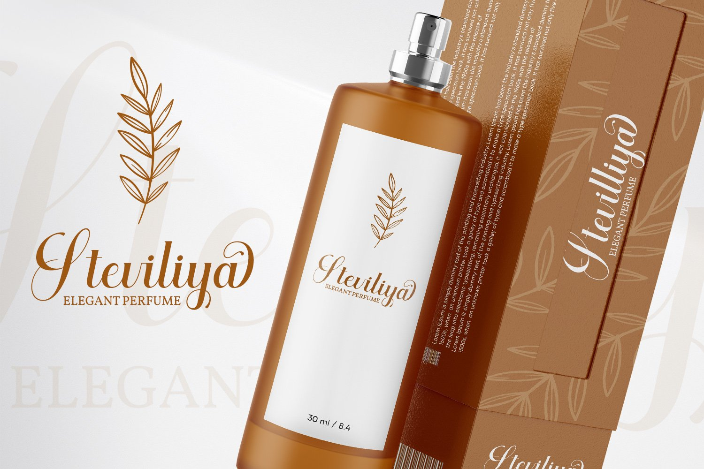 Aiytha Elegant Caligraphy Font -2