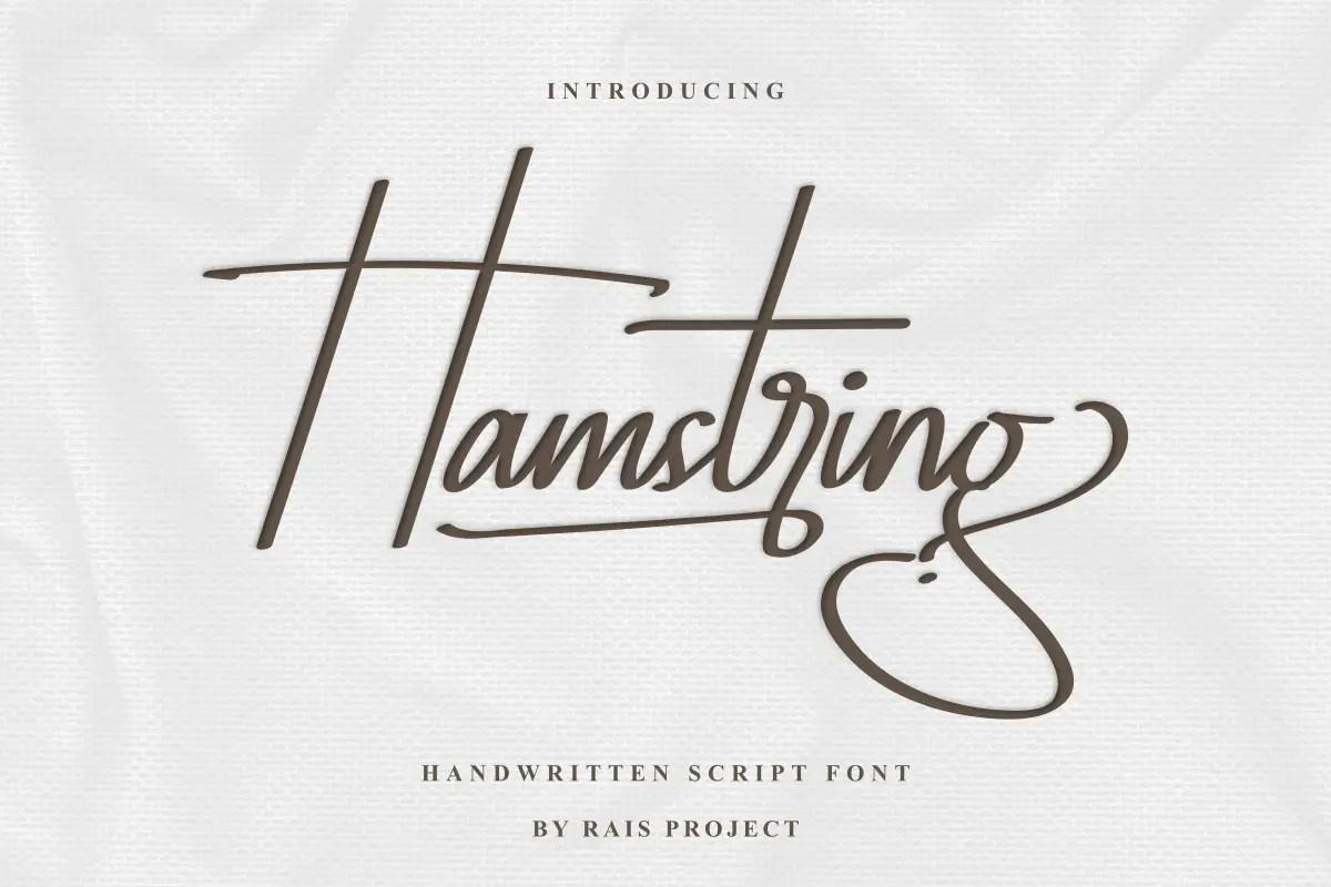 Hamstring Script Handwritten Font -1