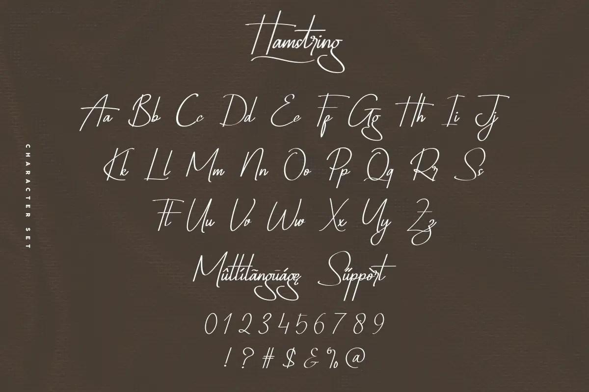 Hamstring Script Handwritten Font -3