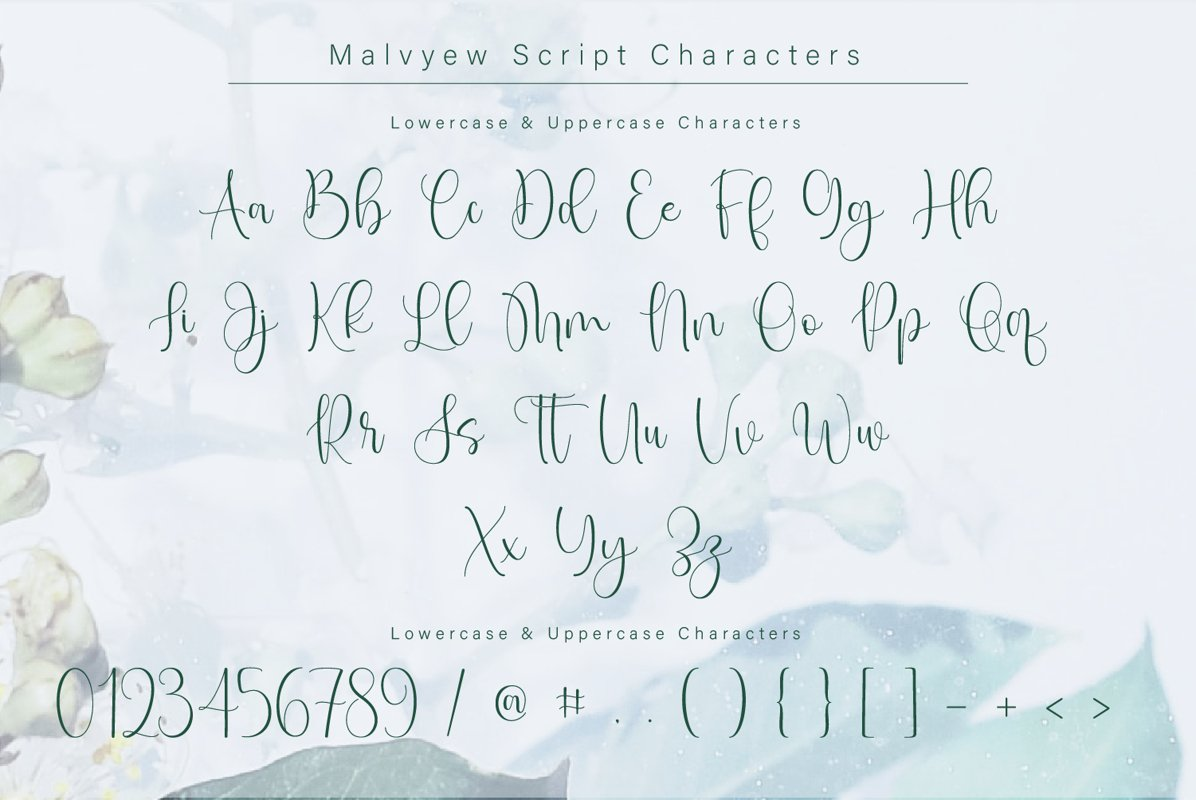 Malvyew Casual Calligraphy Font -3