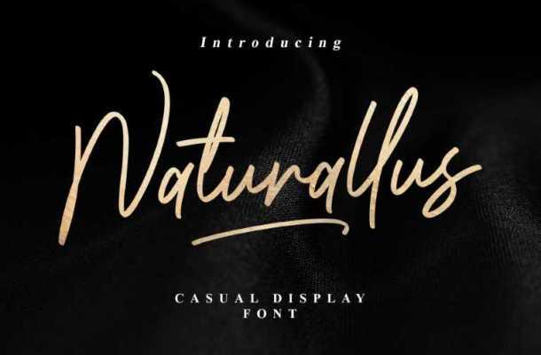 Naturallus Stylish Font
