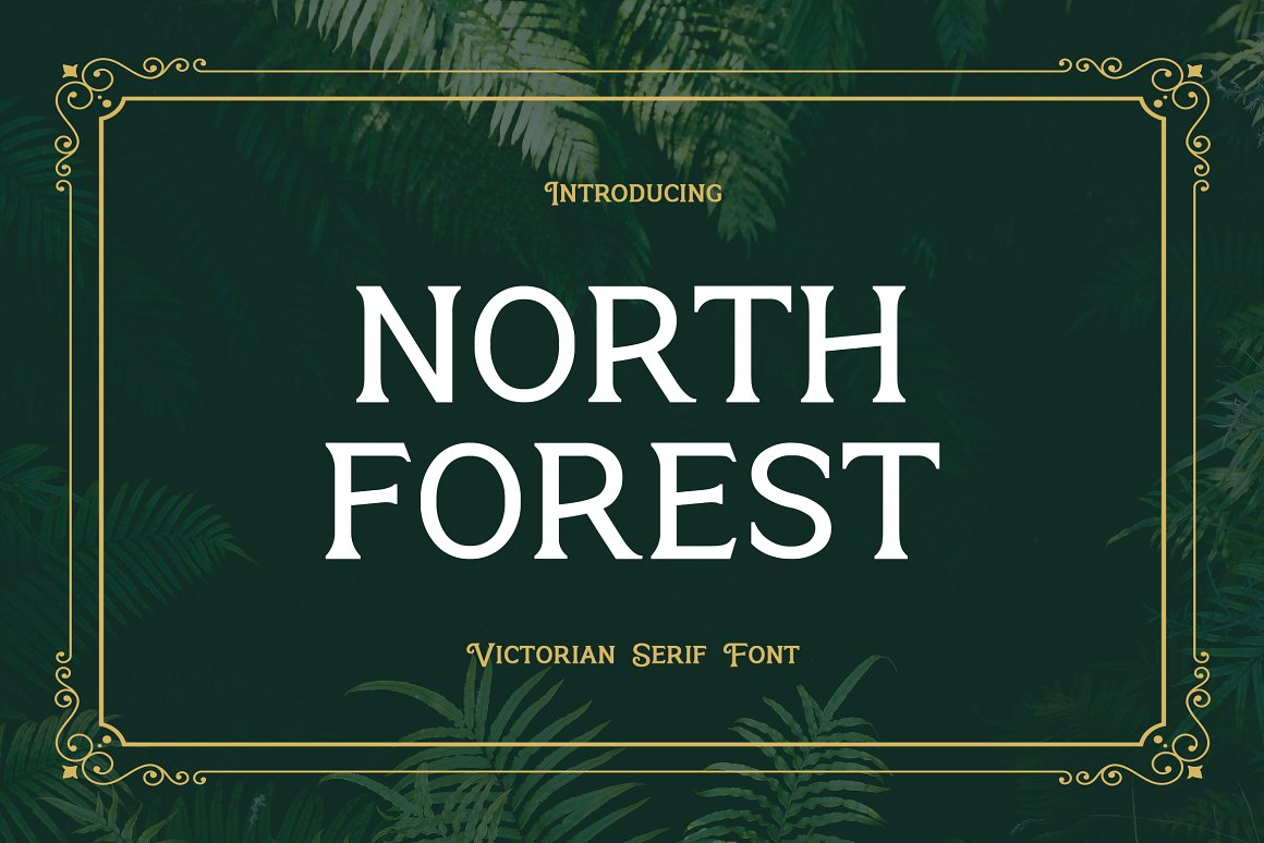 North Forest Serif Typeface -1