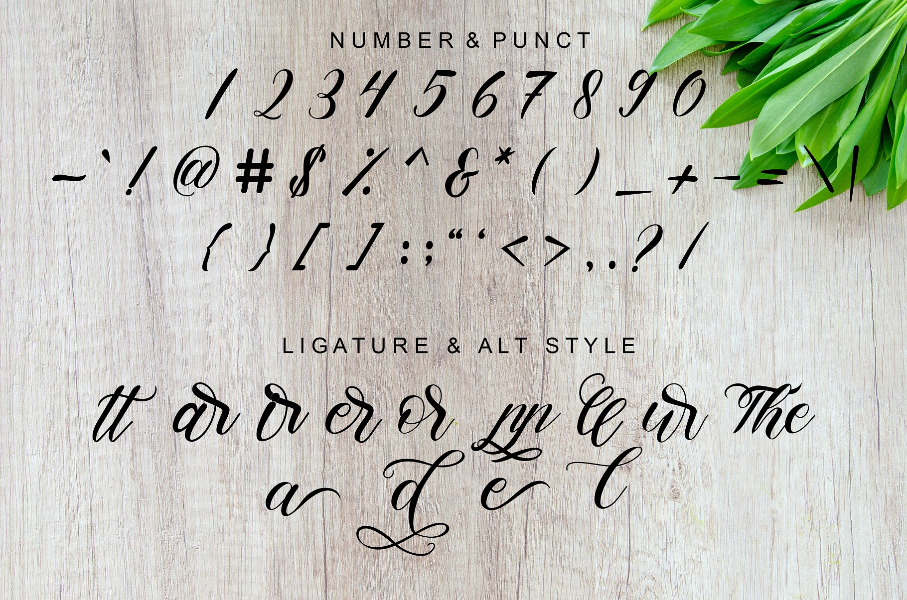 Pudding Calligraphy Font -3