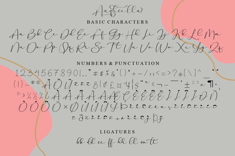 Aaqheella Modern Calligraphy Font -3