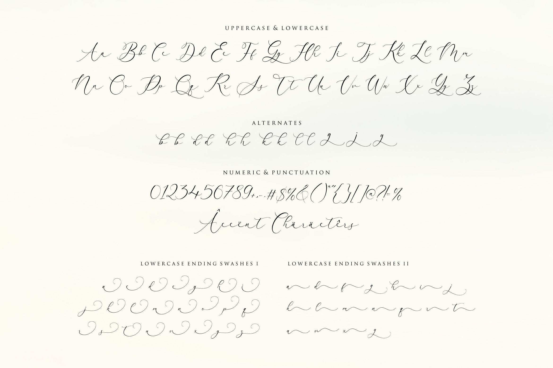 Arletta Stylist Modern Script Font -3